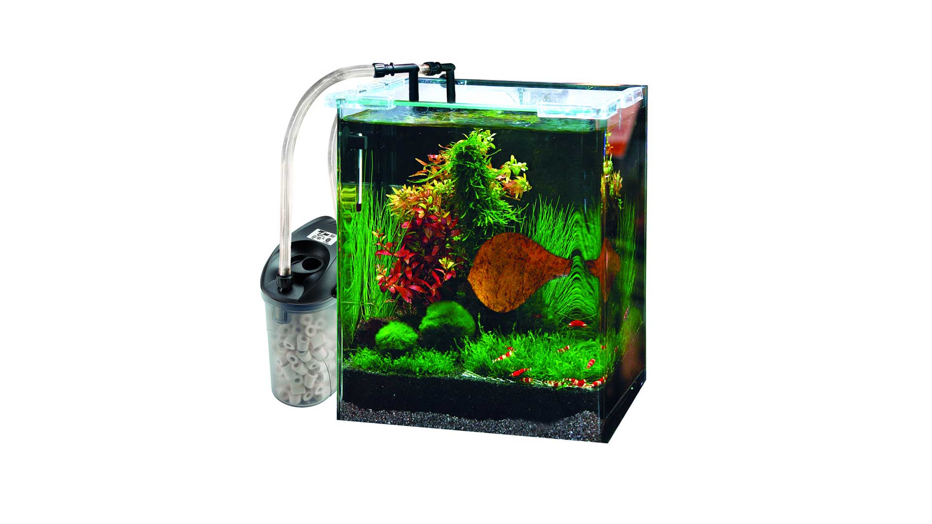 best 5 gallon fish tank filter