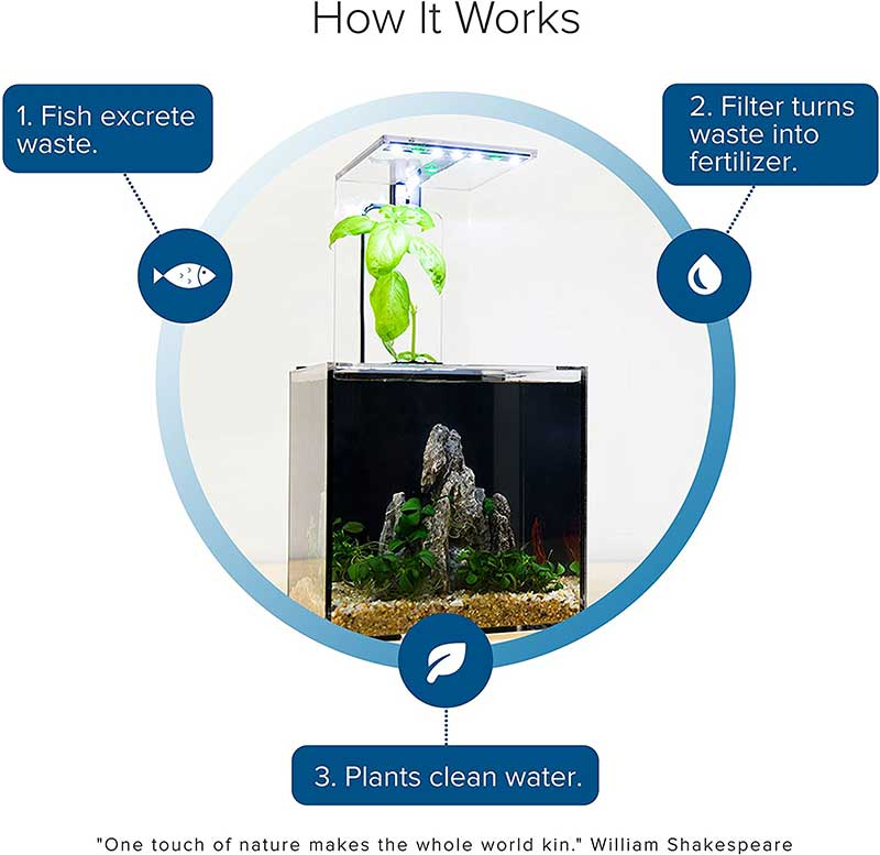 how self cleaning fish tank works