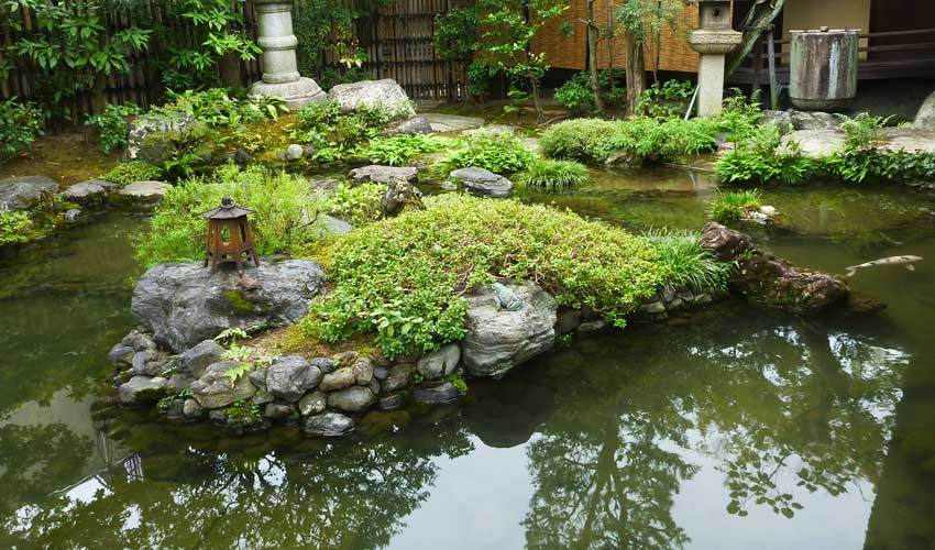 Pond with stones and koi